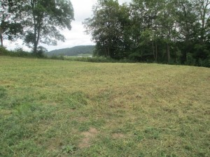 Featured Properties - Nice Buildable Lot, Hillside Drive, Richland Center